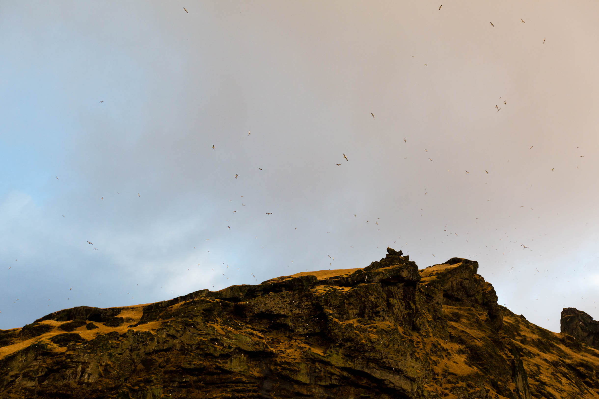 Pictures from exploring the south coast of Iceland