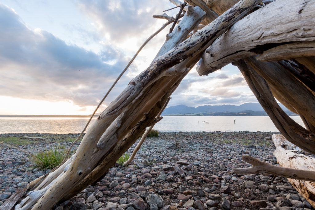 Lake ferry sunset driftwood beach picture