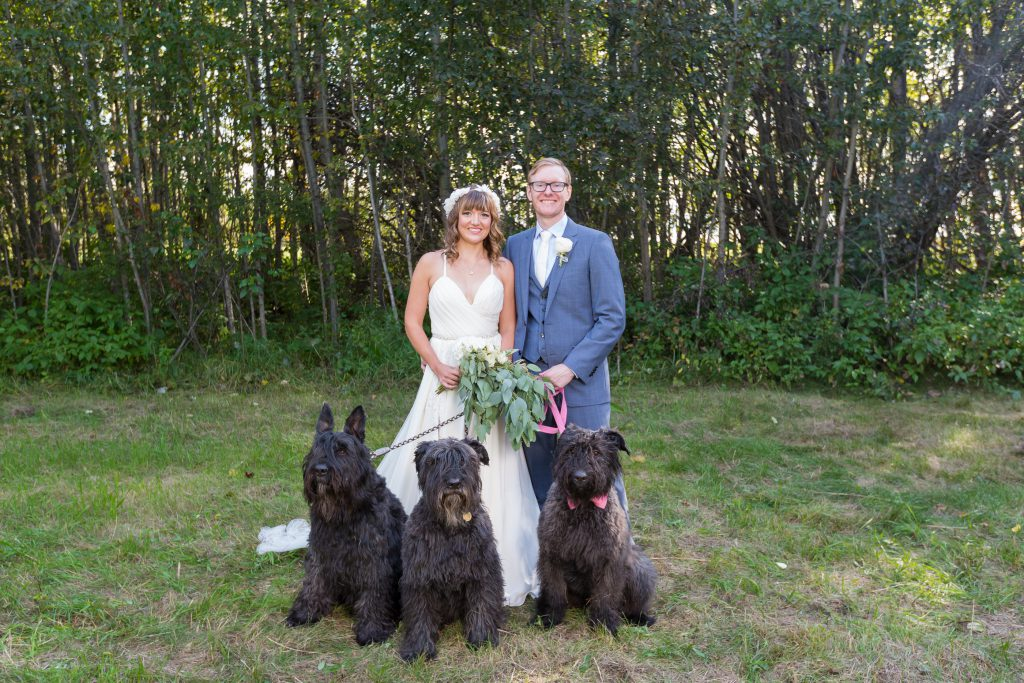 bride and groom with their dogs