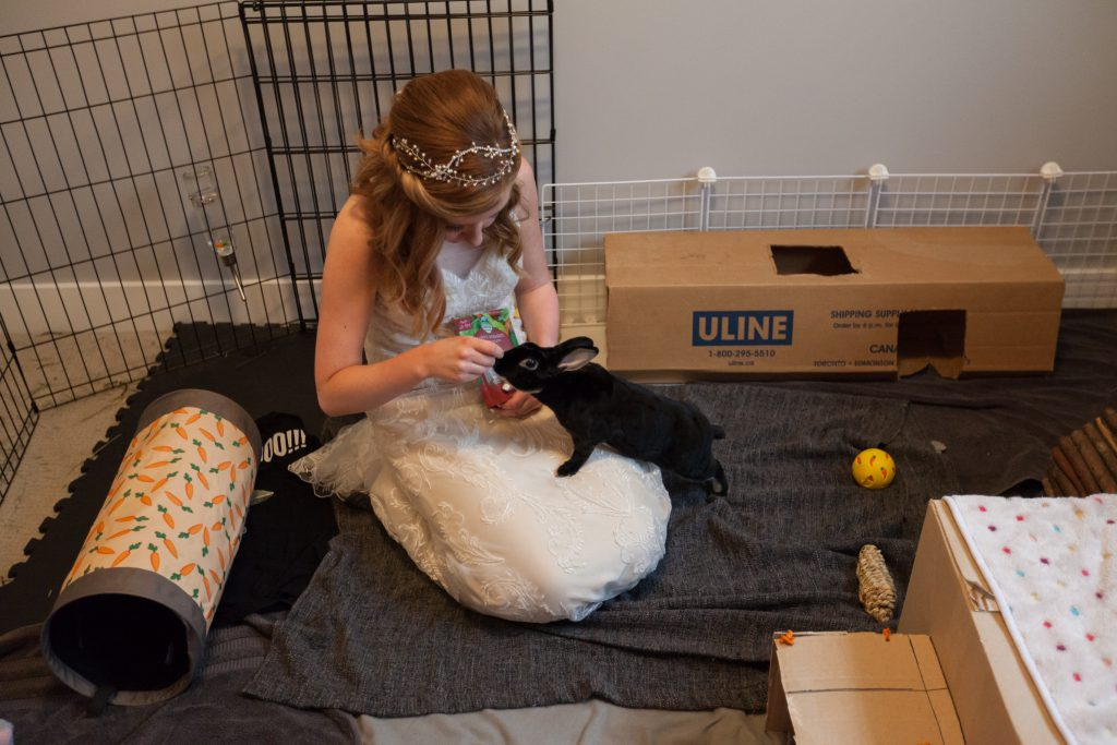 bride playing with her bunny